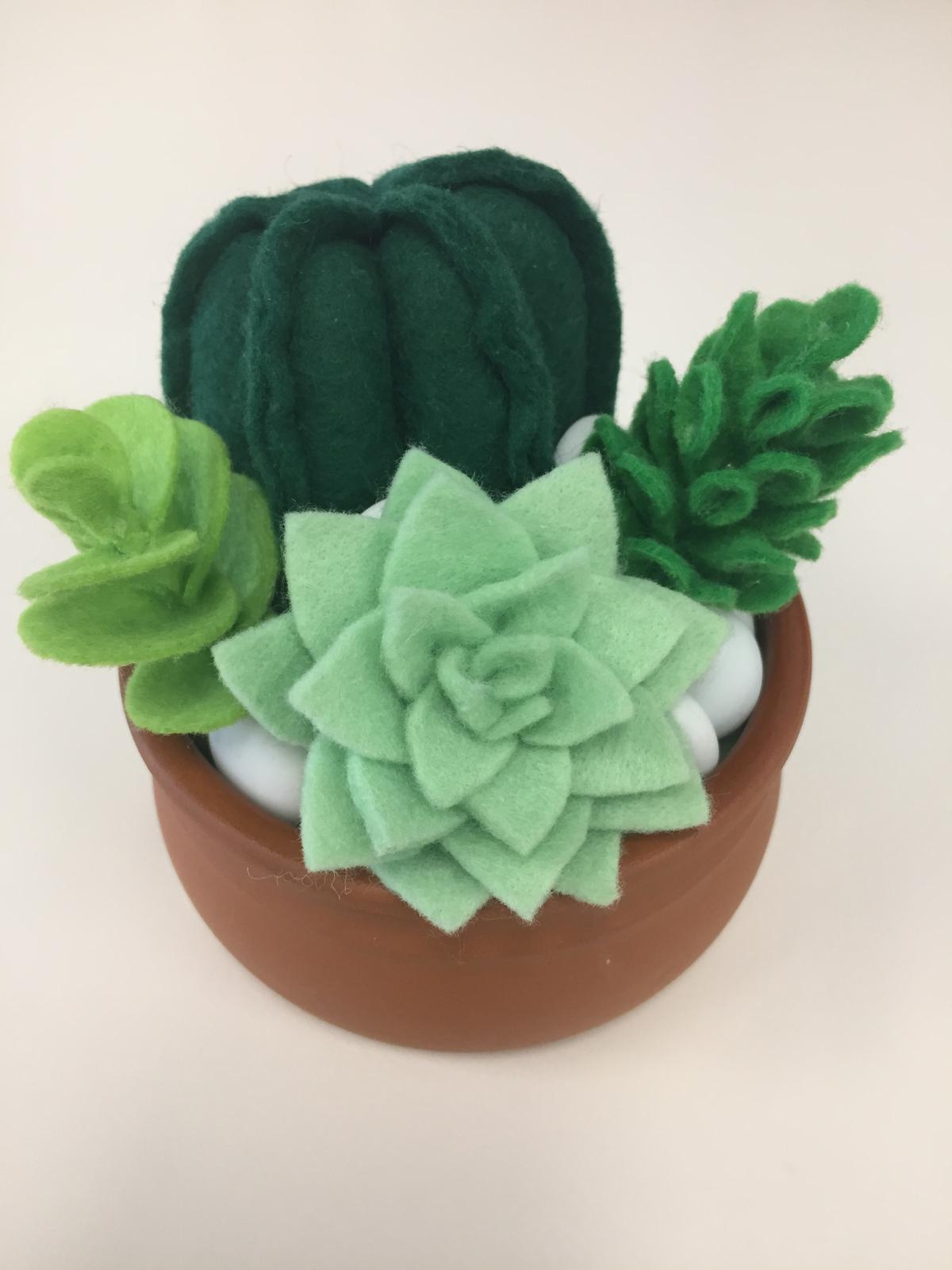 Felt cactus and succulent garden