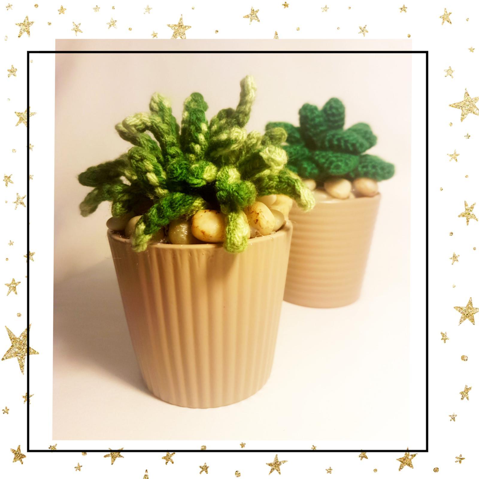 Crochet Succulent Plant