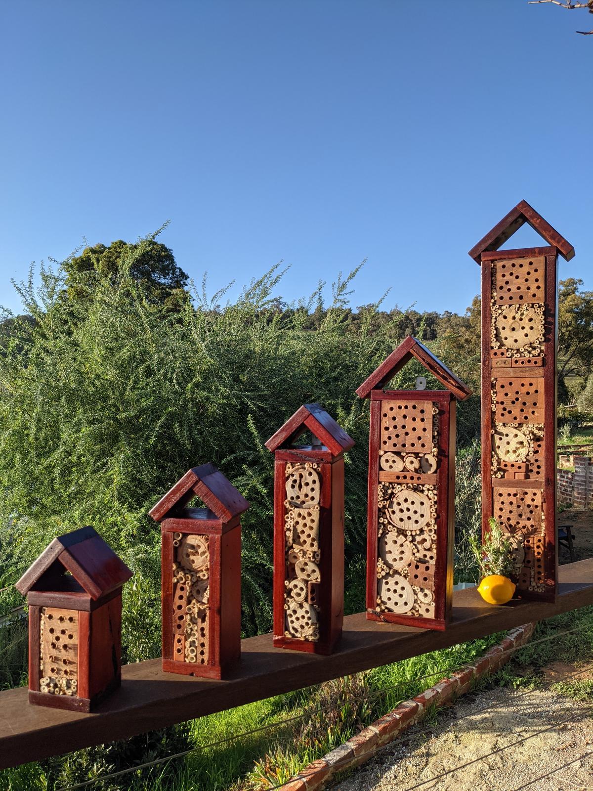 Native Bee Hotels
