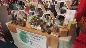 Bottles of Love Terrariums