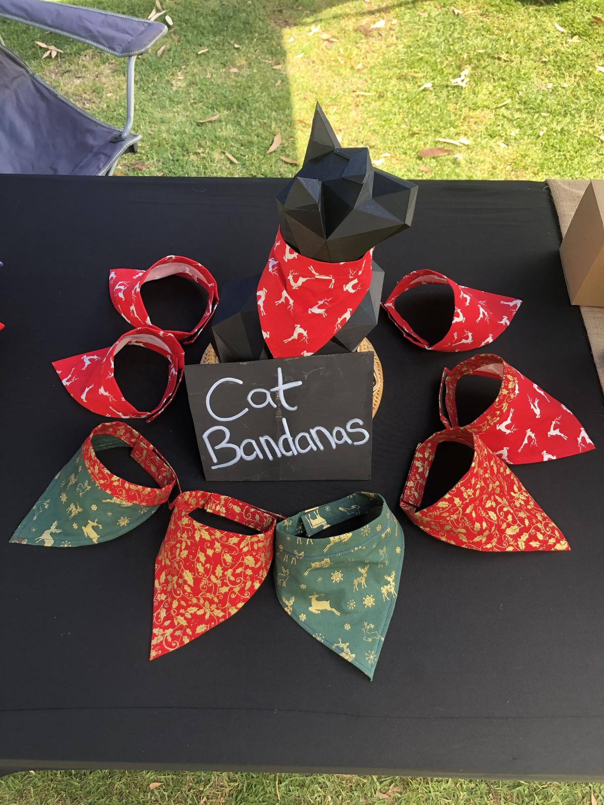 Our Christmas range of Cat attire