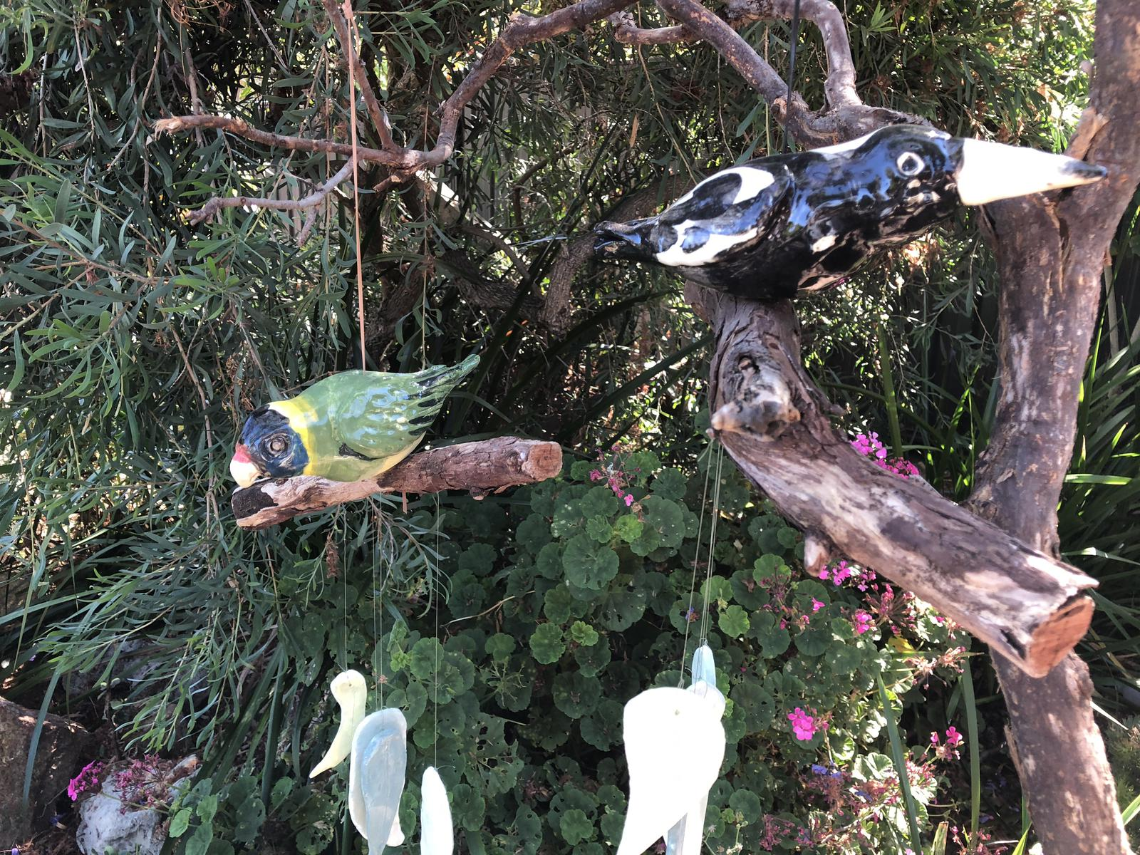 Magpie and Ring neck Parrot Chimes