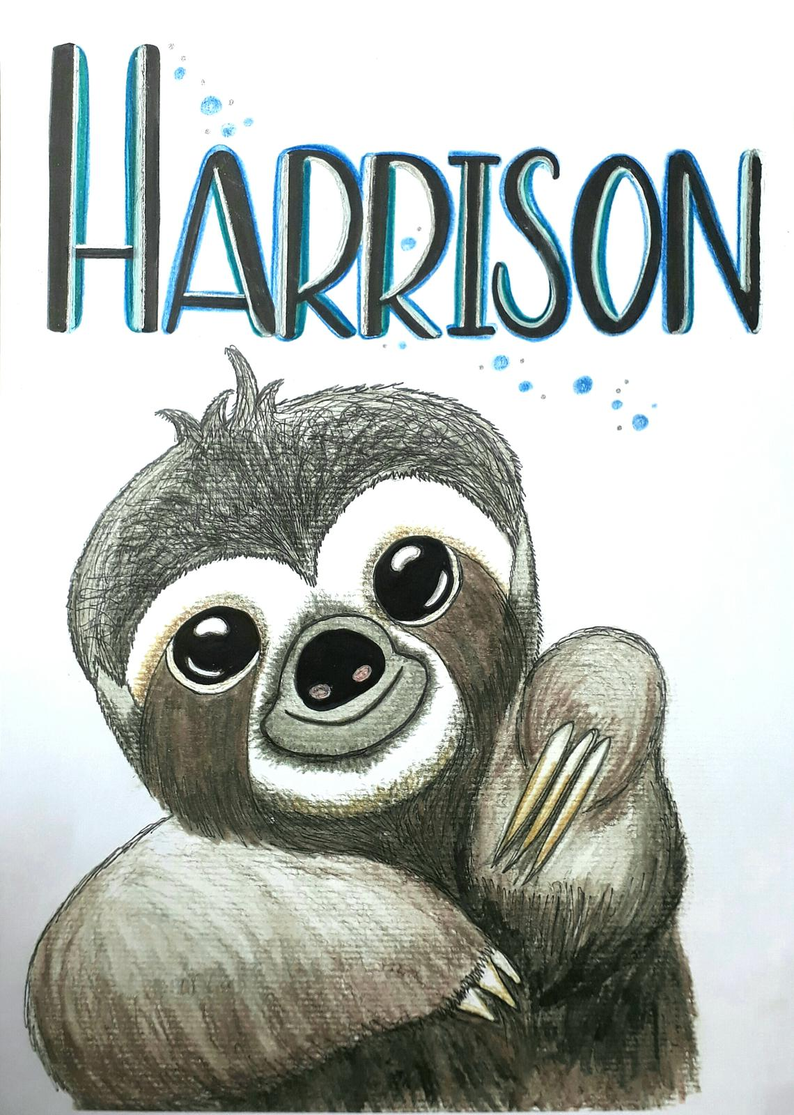 Personalised Sloth