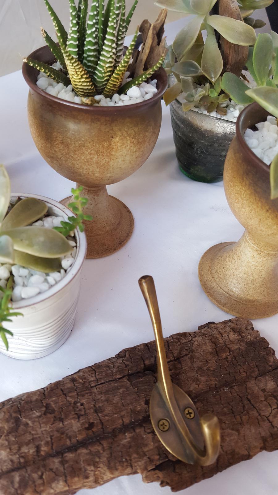Succulents & Hooks