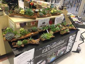 E&V Gardens