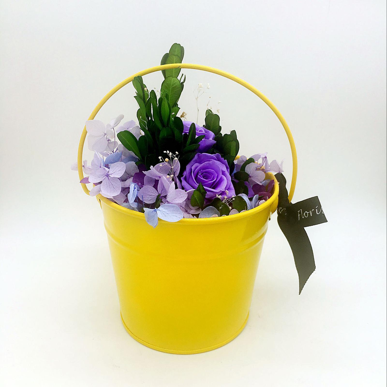 Purple Sunshine