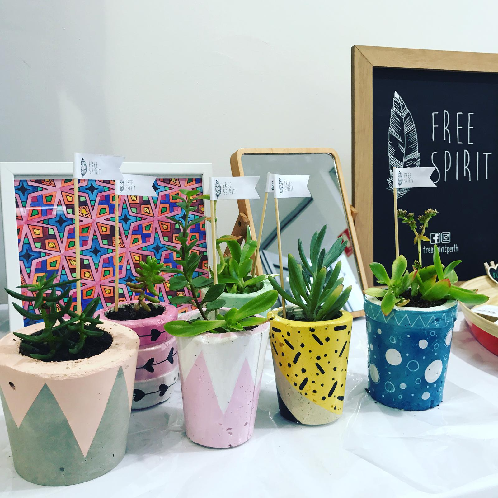 Succulents - Hand painted & poured concrete pots