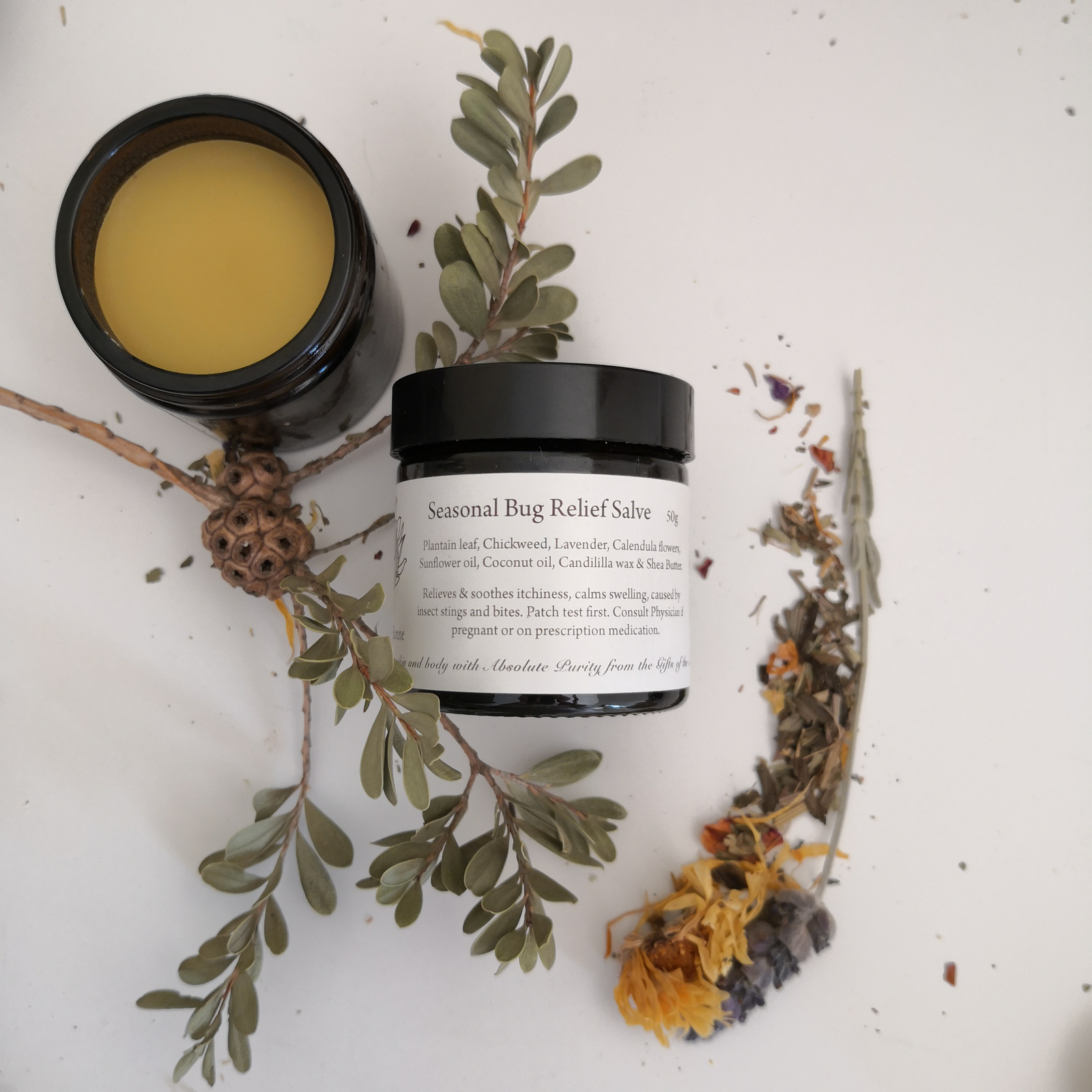 Seasonal bug relief salve