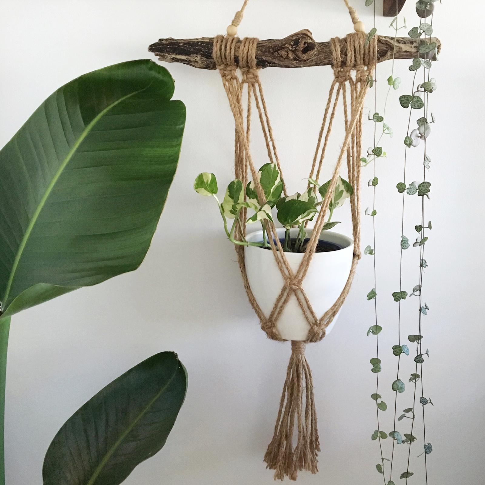 Driftwood macrame plant hanger