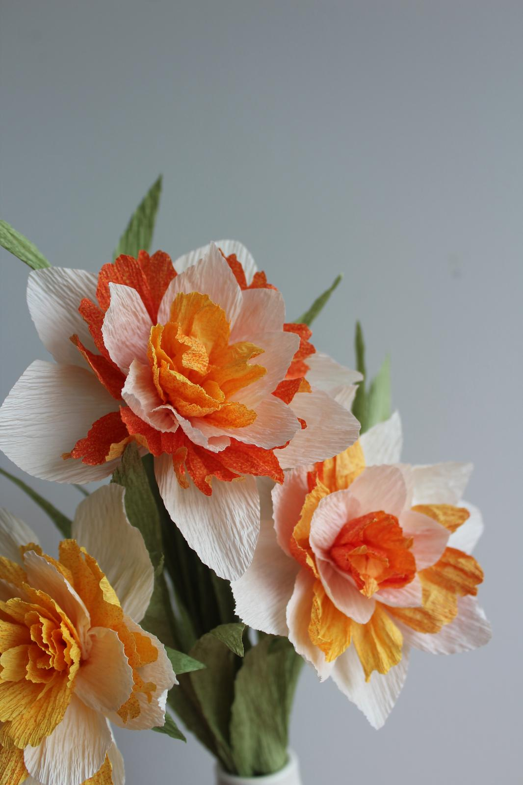 Paper Double Daffodils, photographed by Carrissa Wu