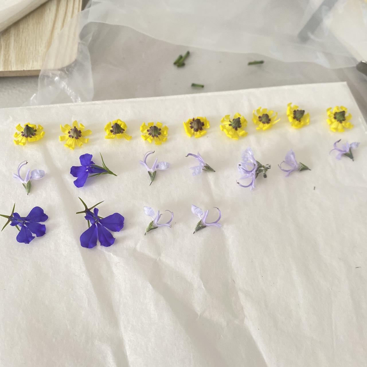 Making dried flowers