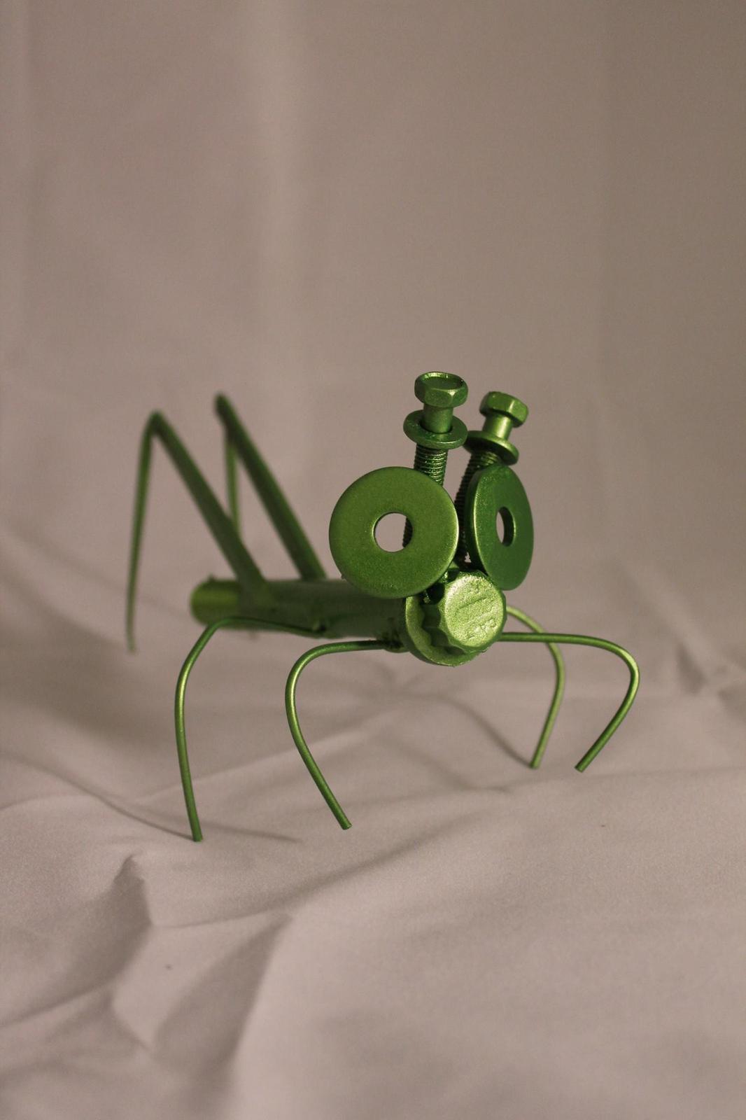 'Charlie' the grasshopper