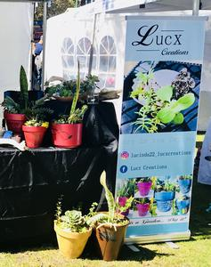 LucX Creations Art & Garden