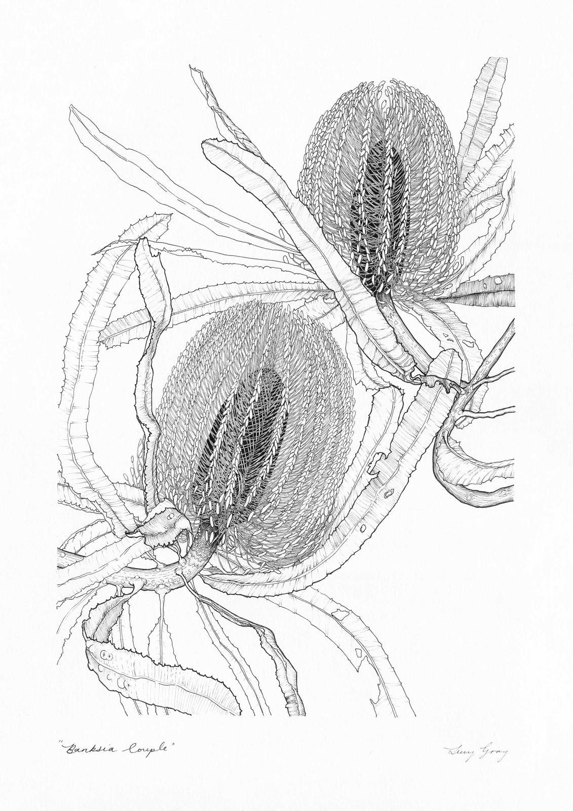 Banksia Couple
