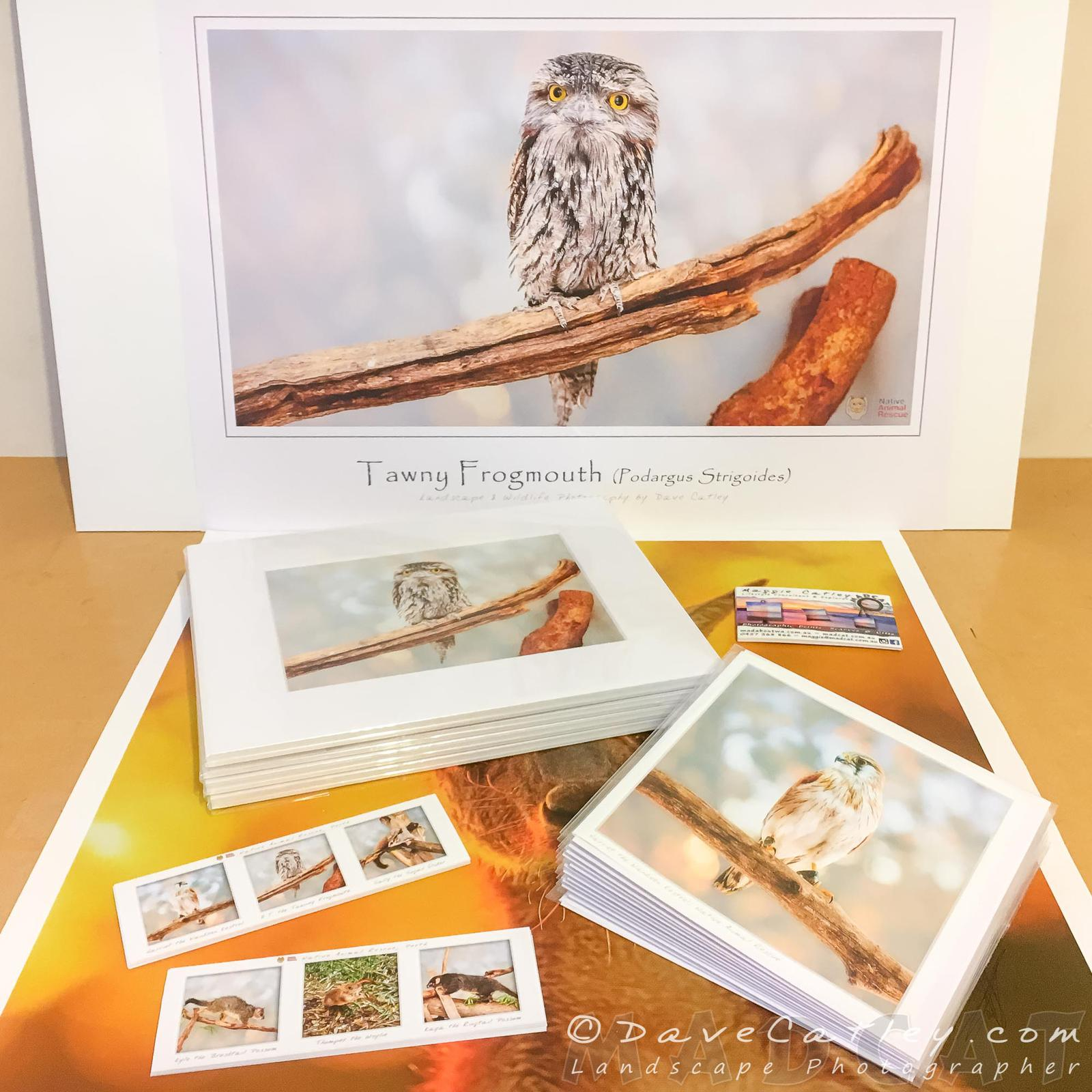 Native Western Australian Animal Prints and Gifts