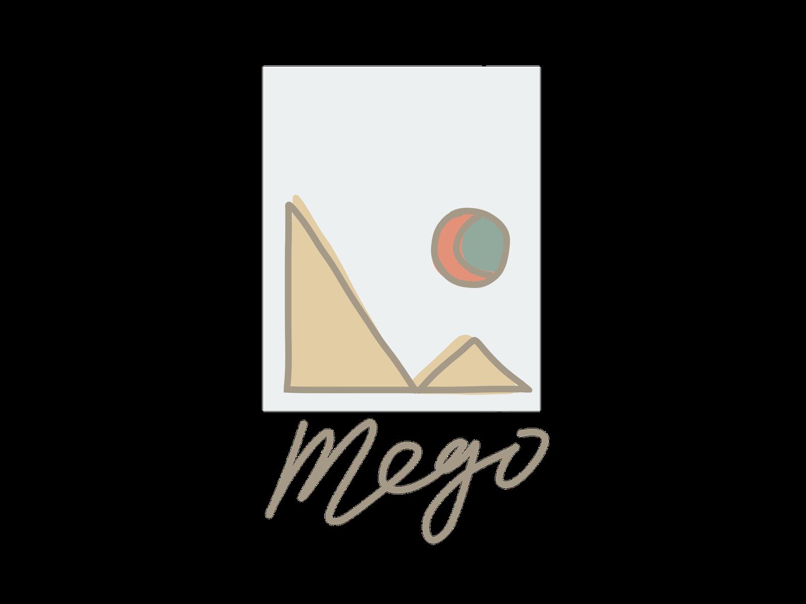 Mego Workshop