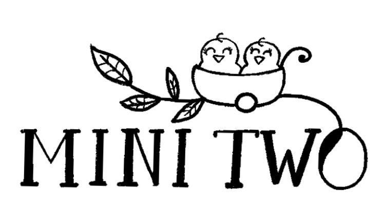 Mini Two