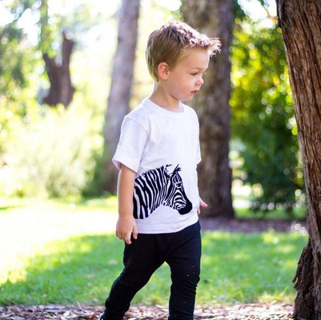 Velvet feel animal collection - Zebra