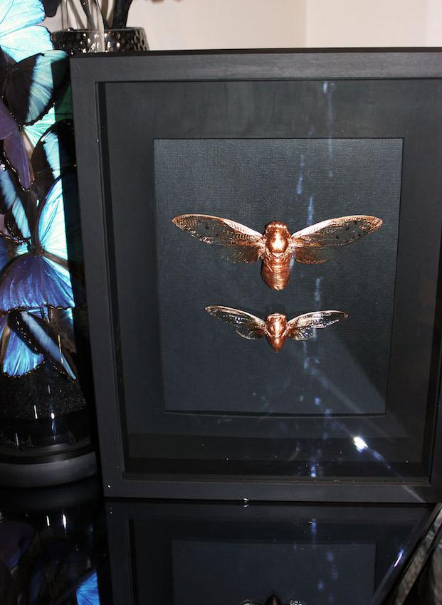 Framed hand painted gold cicadas