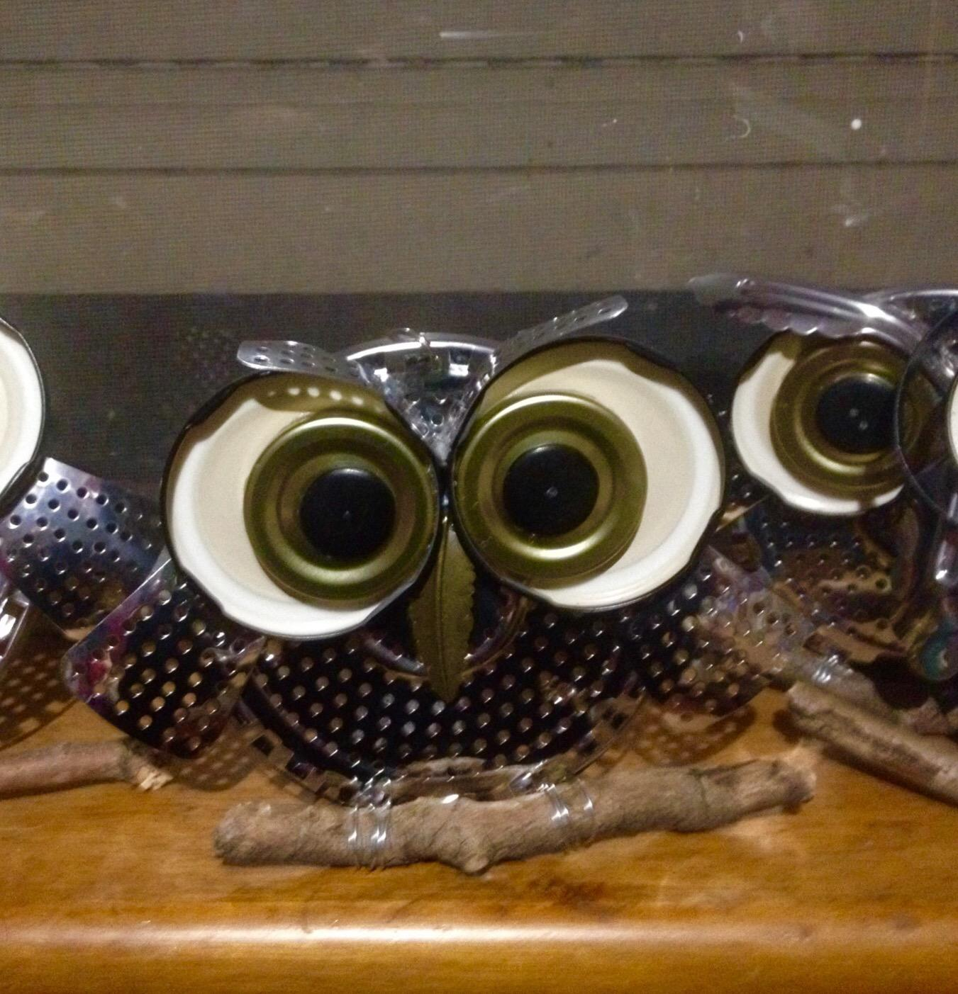 Whooo's looking at you