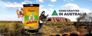Obedient Aussie Dog Chew