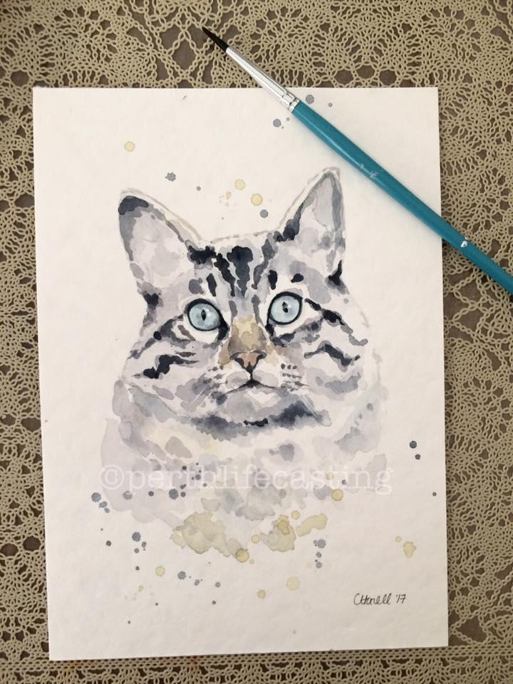 Custom Pet Portrait Cat