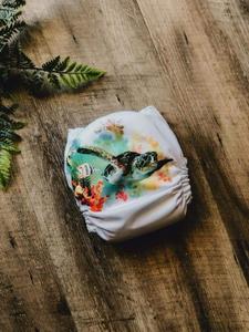 Pudding & Pie MCN