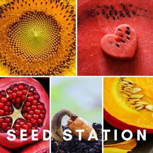 Seed Station