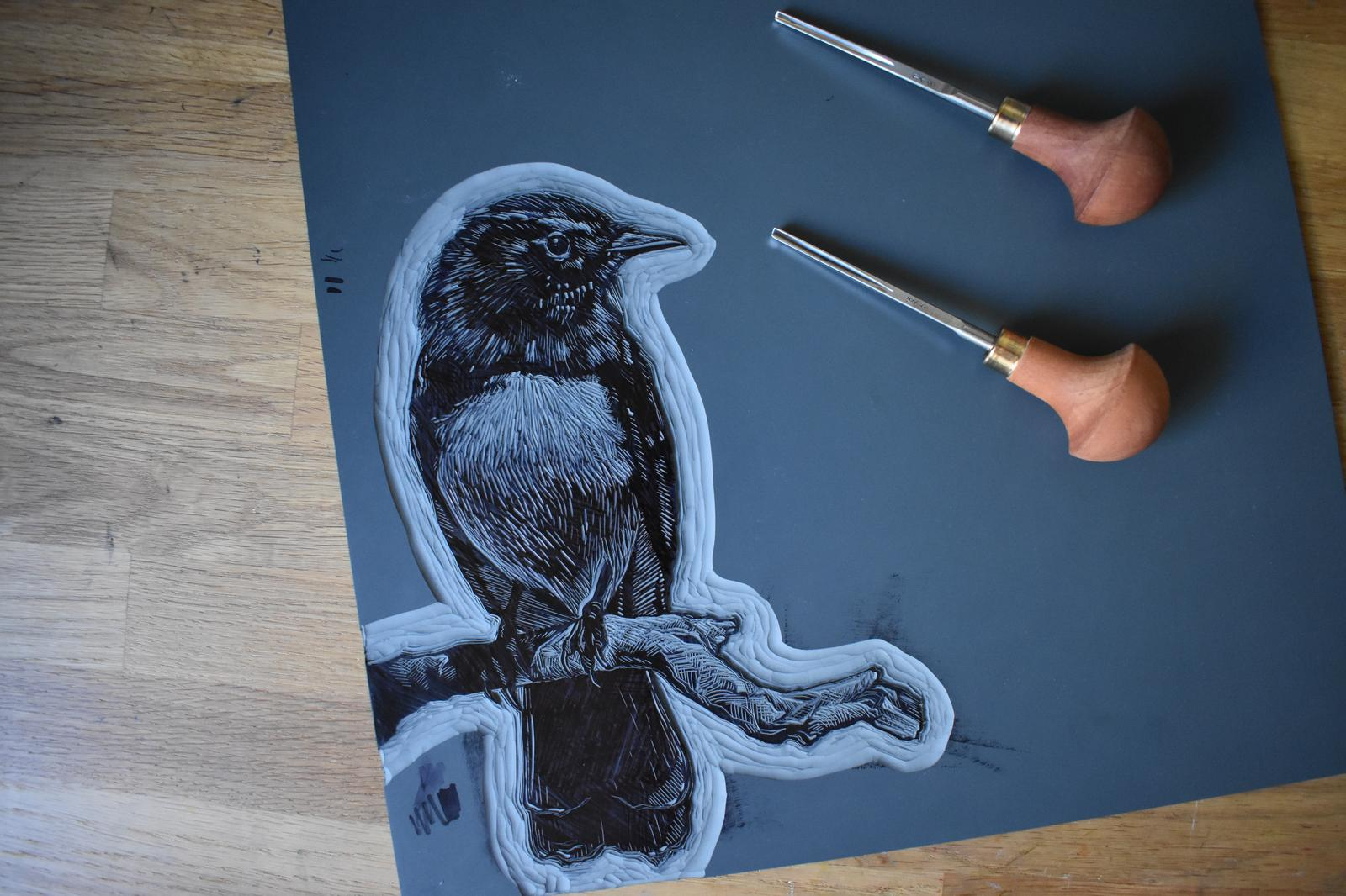 Willie Wagtail Lino Carving in Progress