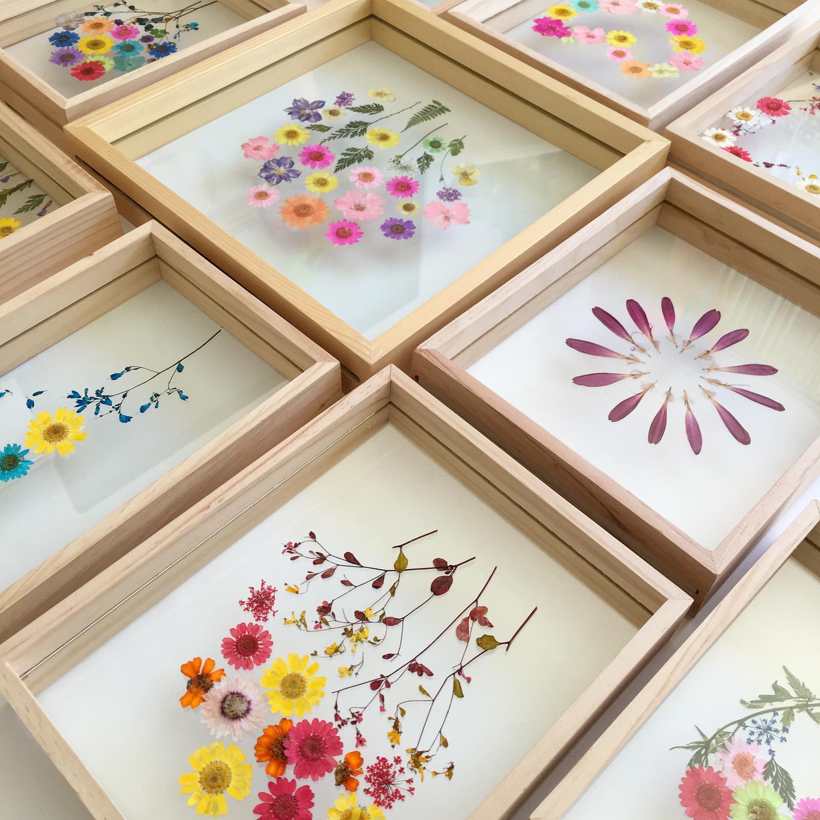 Pressed floral frames