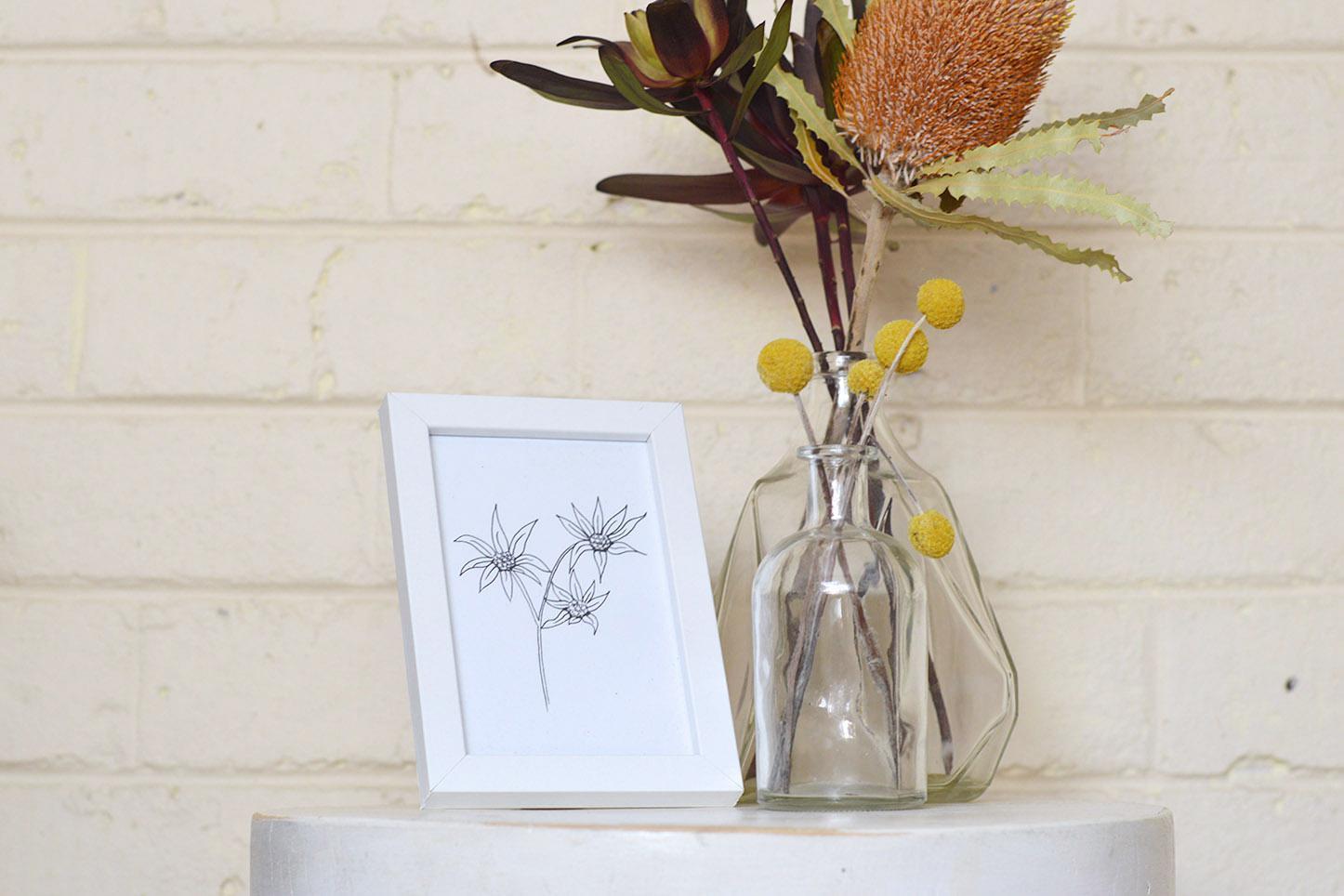 A6 Print - Flannel Flower