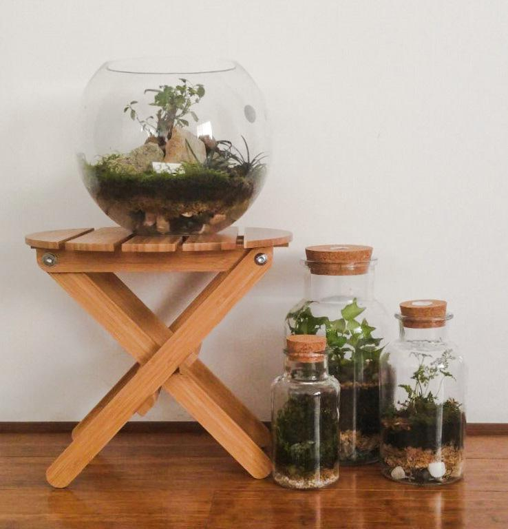 Closed terrariums